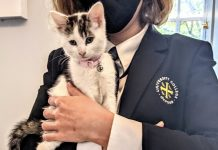 A white kitten with tabby markings is held by a University College porter